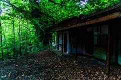 Ödelagd byggnad fördärvar i skogsmark av turkisk bygd royaltyfri foto
