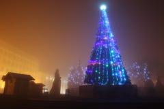 Ödland am Nebel nahe Weihnachtsbaum Lizenzfreie Stockfotos