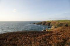 Ödlapunkt i Cornwall, UK Arkivfoton