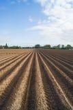 Öffnen Sie Ackerland in Doetinchem, Holland die Niederlande. Lizenzfreies Stockfoto