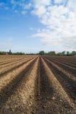 Öffnen Sie Ackerland in Doetinchem, Holland die Niederlande. Stockfotos