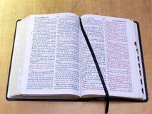 Öffnen Sie Bibel mit Farbband Lizenzfreie Stockfotos
