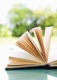 Öffnen Sie Buch über einer hellen Natur stockfoto