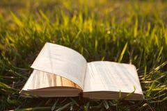 Öffnen Sie Buch auf Gras Lizenzfreies Stockbild