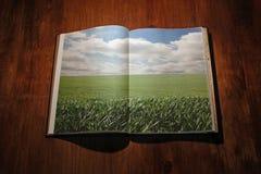 Öffnen Sie Buch mit grüner Landschaft Lizenzfreies Stockbild