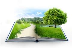 Öffnen Sie Buch mit grüner Natur Stockfoto