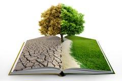 Öffnen Sie Buch mit grüner Natur Stockfotos