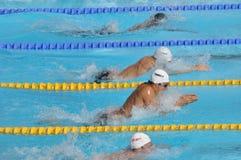 Öffnen Sie EEF 2010, Brustschwimmenrennen Stockfotos