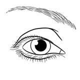 Öffnen Sie einfarbige Vektorillustration des weiblichen Auges Stockfoto