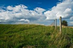 Öffnen Sie Feld mit blauem Himmel Stockbild
