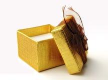 Öffnen Sie Geschenkbox stockfoto