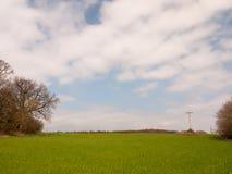 öffnen Sie grüne Frühlingsfeld-Hintergrundnatur, keine Leute Blau- und Wolkenhimmel Stockbilder