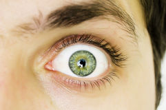 Öffnen Sie graues Auge Lizenzfreies Stockbild