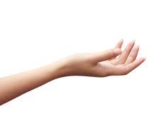 Öffnen Sie Hand der Frauen Lizenzfreies Stockfoto