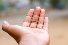 Öffnen Sie Hand des Mannes stockfotos