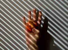 Öffnen Sie Hand gegen einen Schmutzhintergrund Lizenzfreies Stockbild