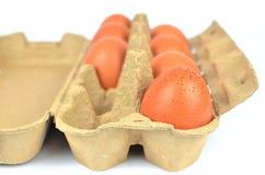 Öffnen Sie Kasten Eier Lizenzfreie Stockfotos