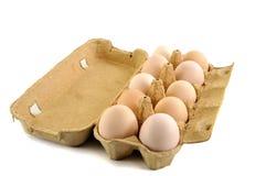 Öffnen Sie Kasten mit 10 frischen Eiern Stockbilder