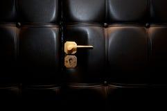 Öffnen Sie lederne Luxuxtür Lizenzfreie Stockfotografie