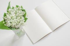 Öffnen Sie leeres Buch mit Maiglöckchen lizenzfreie stockbilder