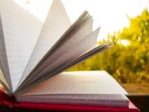 Öffnen Sie Notizbuch auf grünem Gras Stockbild