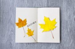 Öffnen Sie Notizbuch und Ahornblätter auf dem Tisch Stockfoto