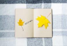 Öffnen Sie Notizbuch und Ahornblätter auf dem Tisch Stockbilder