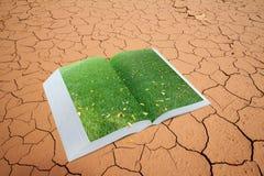 Öffnen Sie sich knallen oben Buch mit wirklicher grüner Rasenfläche auf trockenem gebrochenem Land Stockfoto