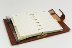 Öffnen Sie Tagebuch mit Feder Stockfoto
