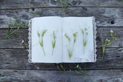 Öffnen Sie Weinlesenotizbuch mit Spitze und weiße Farben auf einem hölzernen BAC stockfoto