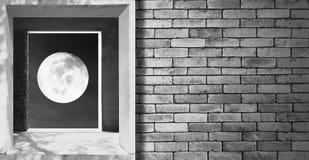 Öffnen zur Nacht Abstraktes Bild der Metapher über Frieden Lizenzfreie Stockfotos