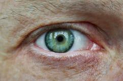 Öga av en vuxen man, grön skugga, närbild Arkivfoto