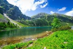 Öga av hav sjön i Tatra berg Royaltyfri Fotografi