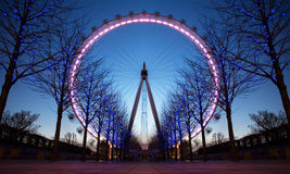 öga london uk Arkivfoto