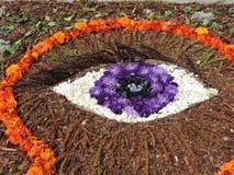 Öga som göras från blommor Arkivfoton