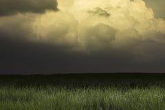 Ögat av stormen Fotografering för Bildbyråer