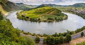 Ögla av den Moselle floden med den Calmont kullen nära Bremm royaltyfria bilder