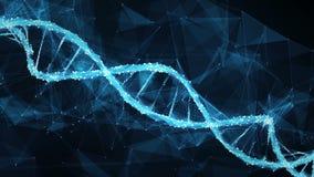 Ögla för molekyl 4k för DNA för Plexus för rörelsebakgrundsDigital polygon vektor illustrationer