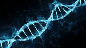 Ögla för molekyl 4k för DNA för Plexus för rörelsebakgrundsDigital polygon arkivfilmer