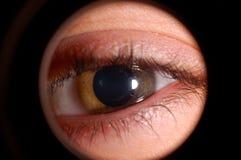 ögon Royaltyfri Fotografi