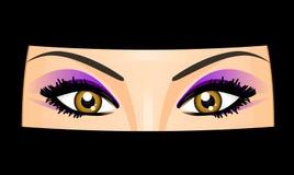 ögon royaltyfri illustrationer