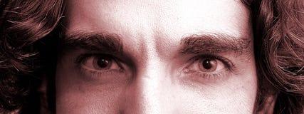 ögon royaltyfri foto