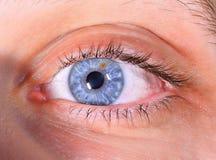 ögon Arkivfoto