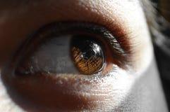 Ögon av betraktaren Fotografering för Bildbyråer