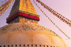 Ögon av Buddha på den Boudhanath stupaen i Katmandu Royaltyfria Bilder
