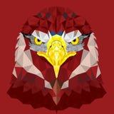 Ögon av Eagle med den geometriska modellen Arkivbilder