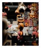 Ögon av mörkret fotografering för bildbyråer