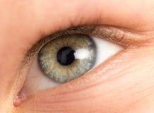 Ögon för barn` s Makro Arkivbilder