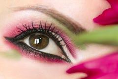 Ögon för brunt för makeup för kvinna` s gröna arkivfoto