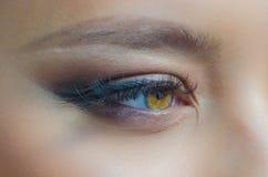 Ögon för flicka` s och makeupnärbild royaltyfri foto